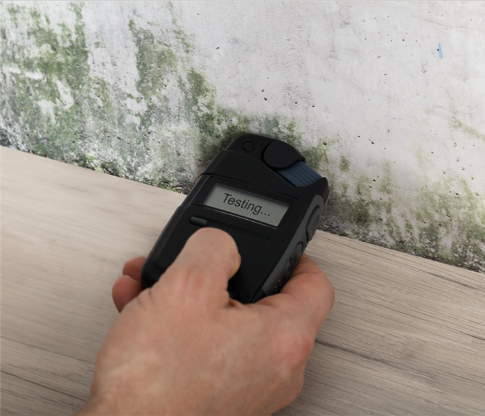 The hand of someone with a moist meter on wall, testing for mold