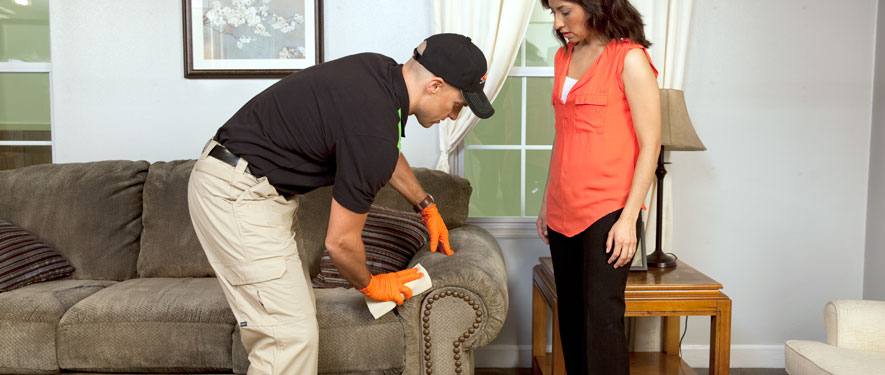 Cranston, RI carpet upholstery cleaning